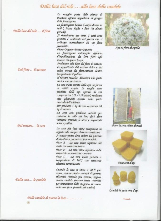 Laboratorio apistica 2